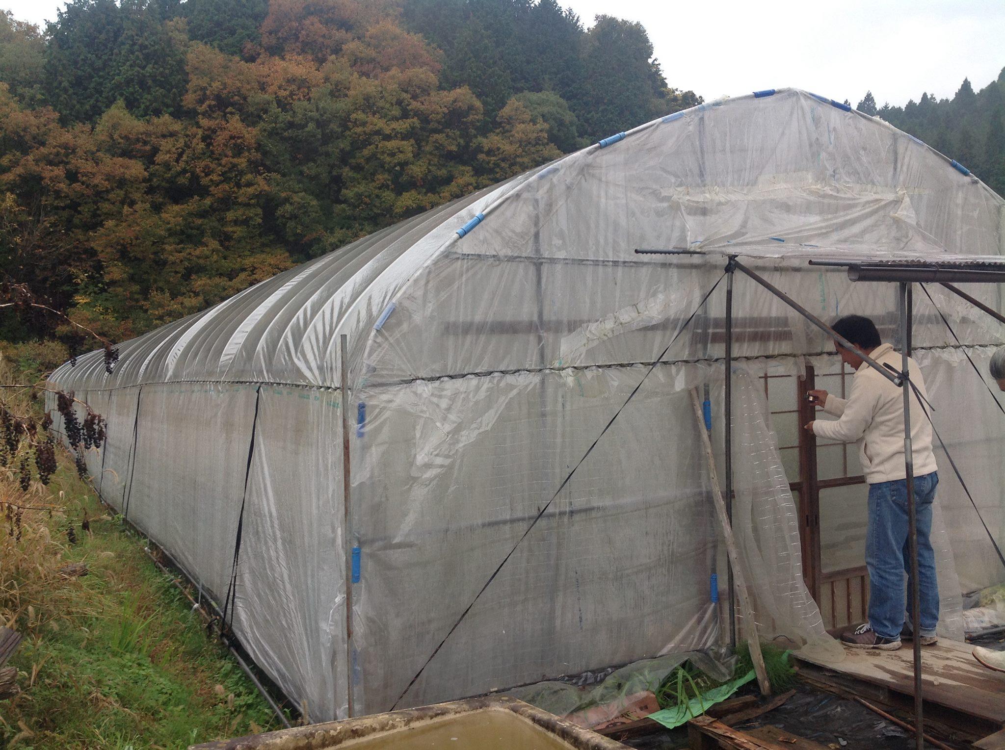 奈良10.jpg