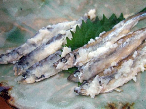 2004_0117toku010166.jpg