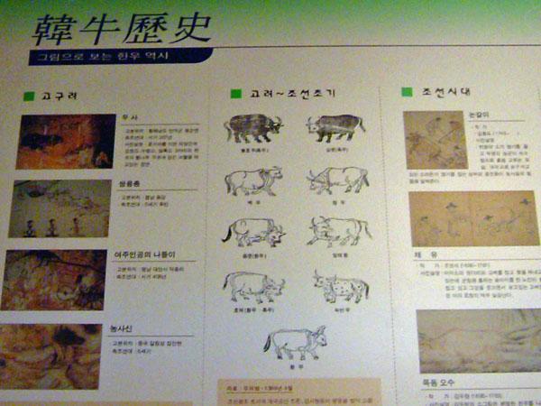 2004_0517kan0016.jpg