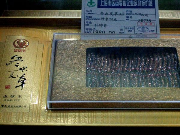 DSCF1725kimio3.jpg